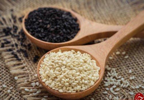 شگفت انگیز ترین خواص کنجد و تاثیر آن بر سلامتی انسان کنجد گیاهی گُلدار و از ردهی دولپهایهاست. دانههای کنجد حاوی روغن بسیار باارزشی هستند. این دانهها ۵۵ درصد چربی و ۲۰ درصد پروتئین دارند و به همین دلیل یک منبع بسیار غنی از اسیدهای چرب ضروری و بعضی از اسیدهای آمینه محسوب میشوند.