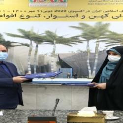 درخشش هنر صنعت فرش دستبافت ایران در اکسپو 2020 دوبی